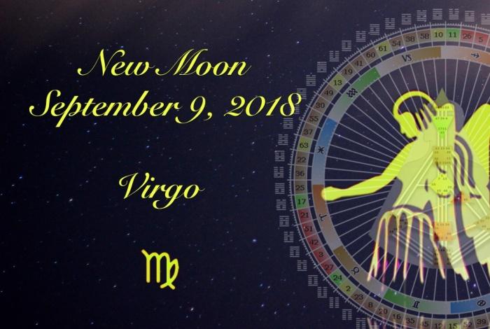 virgo blog